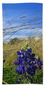 Texas Bluebonnet Center Of Attention Beach Towel