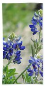 Texas Bluebonnets 01 Beach Towel