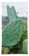 Texas Cactus Beach Towel