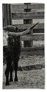 Texas Longhorn Black And White Beach Towel