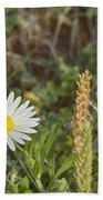 Texas Wildflowers V5 Beach Towel