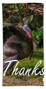 Thanksgiving Turkey Beach Towel