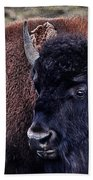 The American Bison Beach Towel