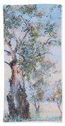 The Ancient Gum Tree Beach Sheet