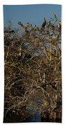 The Anhinga Trees Beach Towel
