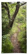 The Appalachian Trail Beach Towel by Debra and Dave Vanderlaan