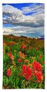 The Art Of Wildflowers Beach Towel