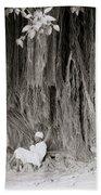 The Banyan Tree Beach Towel