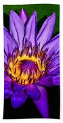 The Beauty Of A Water Liliy Beach Towel