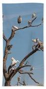 The Bird Tree Beach Towel