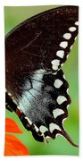 The Butterfly And The Zinnia Beach Towel