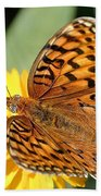 The Butterfly Effect Beach Towel