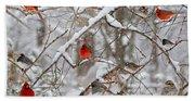 The Cardinal Rules Beach Towel