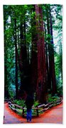 The Cathedral Beach Towel