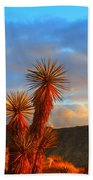 The Cerbat Foothills Beach Towel