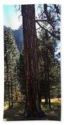 The Chapel Yosemite Beach Towel