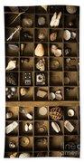 The Collection Beach Sheet