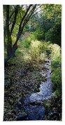 The Creek At Finch Arboretum 2 Beach Towel