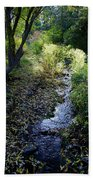 The Creek At Finch Arboretum Beach Towel