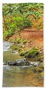 The Creek 0061 Beach Towel