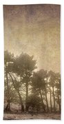 The Curved Tree Beach Towel