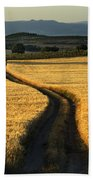 The Curved Way. Beach Towel