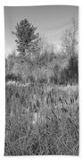 The Dance Of The Cattails Bw Beach Towel