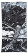 The Darkening Tree Beach Towel