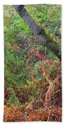 The Deep Rainy In The Mysterious Forest Beach Towel