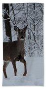 The Deer In The Snow Beach Towel