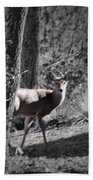 The Deer Beach Towel