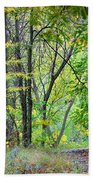 The Dense Forest Beach Towel