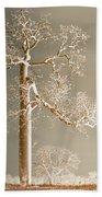 The Dreaming Tree Beach Towel