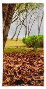 The Dry Season Beach Towel