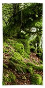 The Elven Forest No2 Wide Beach Towel