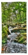 The Emerald Forest 3 Beach Towel