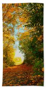 The End Of The Road. Beach Towel