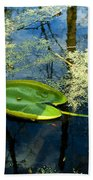 The Floating Leaf Of A Water Lily Beach Towel