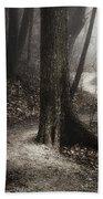 The Foggy Path Beach Towel by Scott Norris