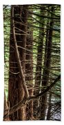 The Forest Combed By The Wind In The Lake Beach Towel