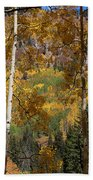 The Forest For The Trees Beach Towel