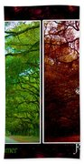 The Four Seasons- Featured In Comfortable Art And Newbies Groups Beach Towel