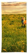 The Fox And The Cow Beach Towel