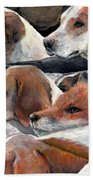 Fox Play Beach Towel