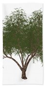 The French Tamarisk Tree Beach Towel