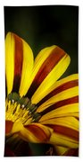 The Gazania Beach Towel