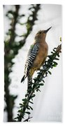 The Gila  Woodpecker Beach Towel