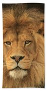 The Glory Of A King Beach Towel