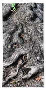 The Gnarled Old Tree Beach Towel
