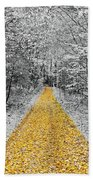 The Golden Path  Beach Towel